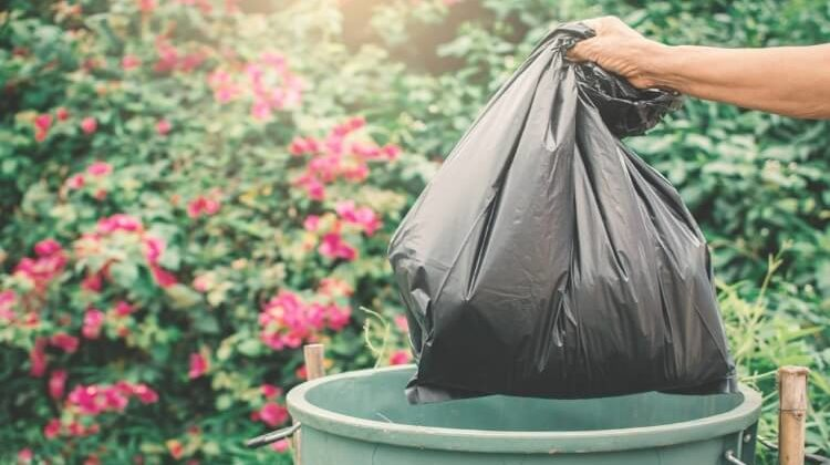 The 7 Best Biodegradable Trash Bags You Should Use