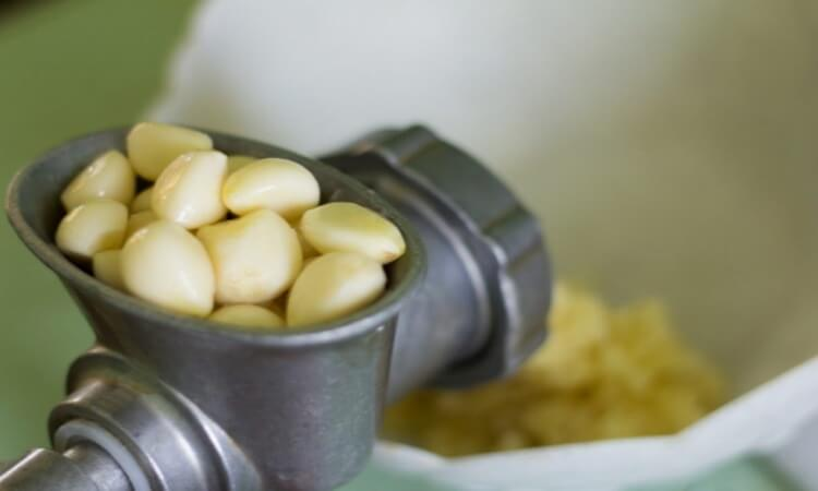 The 7 Best Garlic Mincers For Your Kitchen